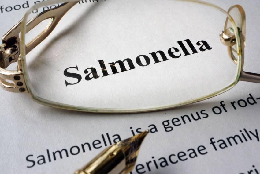 The word salmonella written on paper